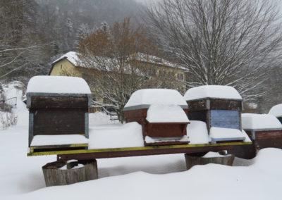 hiver IMG_0002