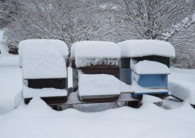 hiver IMG_0003